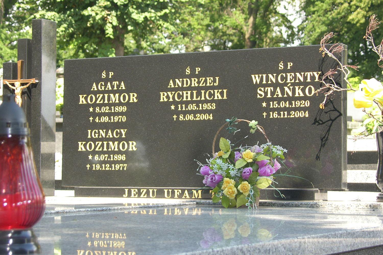 Andrzej Rychlicki | Dane z KRS | sunela.eu