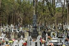 Grobowiec Rychlickich (właścicieli Wilczej Woli) w Spie